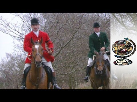 Should fox hunting be banned? (2002)