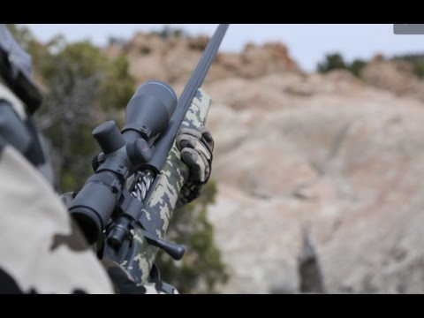 Long range hunting. whats the best caliber?