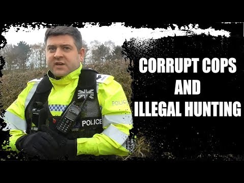 Corrupt cops and illegal fox hunting