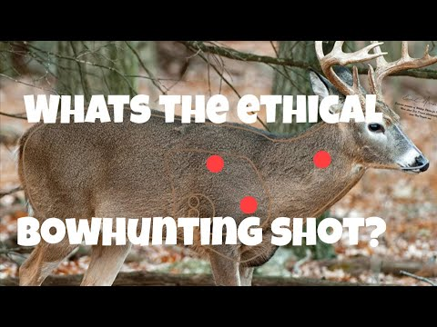 Ethical bowhunting whitetail deer! ethical neck shots, ethical lung shots ethical deer hunting!