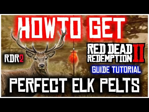 How to find pristine elks and get perfect pelts | red dead redemption 2 | guide tutorial