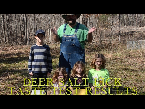 Results - what do deer eat? ☘🍀☘