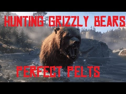 Rdr2 - hunting grizzly bears! how to get perfect bear pelts! red dead redemption 2