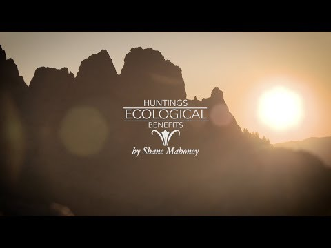 Hunting's ecological benefits