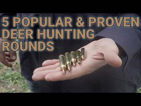 5 popular and proven deer hunting calibers