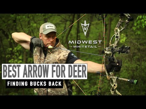 Best arrow for deer, disappearing bucks   midwest whitetail