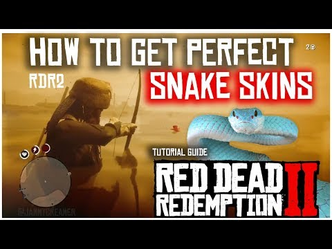 How to find pristine snakes and get perfect snake skins | red dead redemption 2 | tutorial guide