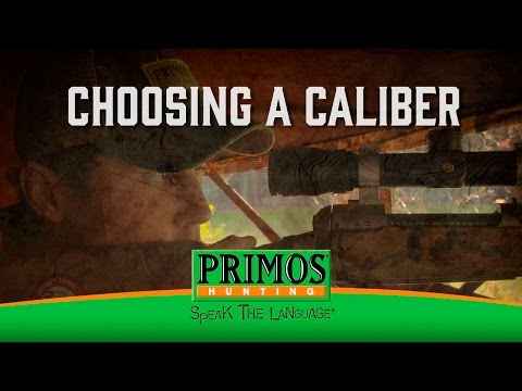 How to pick a rifle caliber for deer hunting