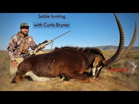 Hunting in africa with curtis from the states at tollies african safaris
